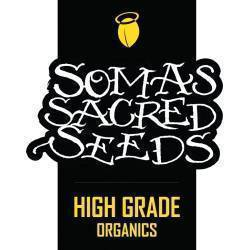 SOMINT COOKIES · Soma Seeds...